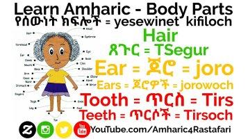 Learn Amharic - Body Parts (Vocabulary)